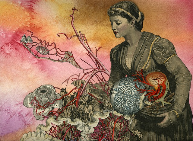 Mixed-media collage by Cincinnati artist Sara Pearce. A young Victorian woman tends to an anatomical garden