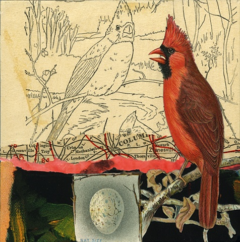 Mixed-media collage of cardinals from Cincinnati artist Sara Pearce's bird series, Out On A Limb. Made with antique, vintage and recycled papers