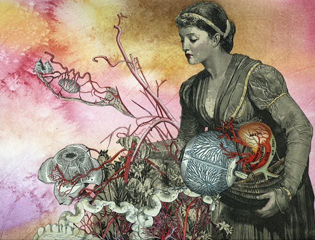 A Victorian era woman tends an anatomical garden in a reproduction of  a collage by Cincinnati artist Sara Caswell-Pearce