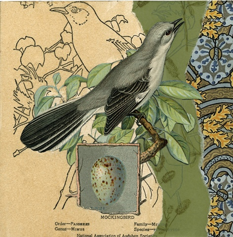 Mixed-media collage of mockingbirds from Cincinnati artist Sara Pearce's bird series, Out On A Limb. Made with antique, vintage and recycled papers