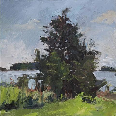 Tree, GCI