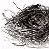 Nest II