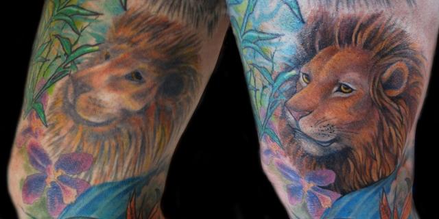 Lion Rework
