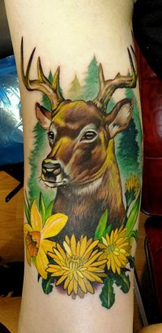 Jersey Buck