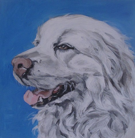 tucker pet portrait painting kira birney