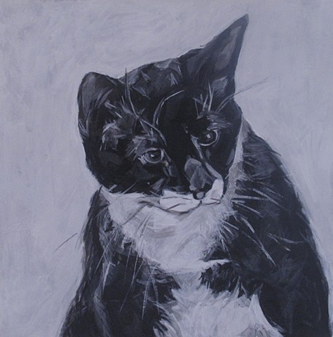 commission cat portrait kira birney