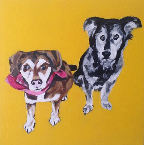 pet portraits by kira birney kasha and buddy
