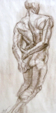 Male Back View  Life Drawing