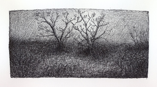 Two Old Trees Landscape Drawing