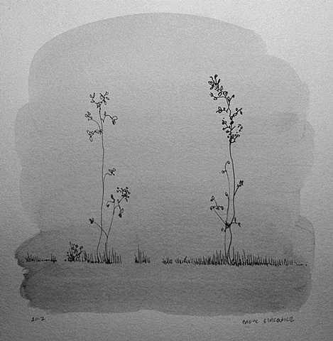 Two Meadow Plants