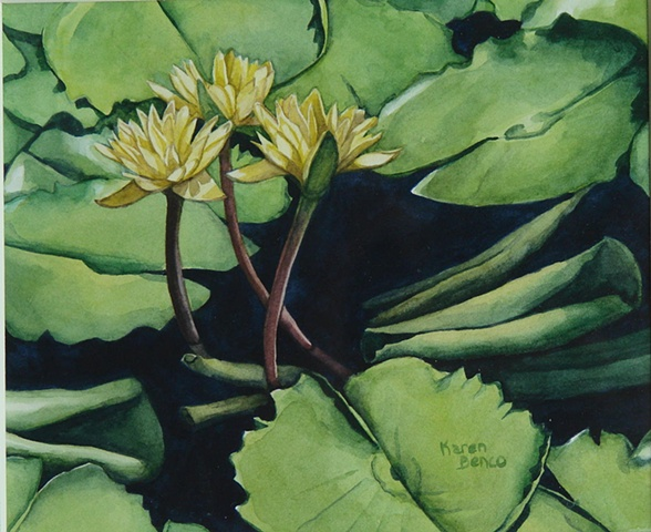 Waterlilies Yellow-Framed