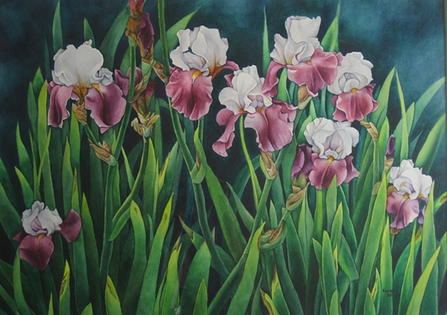 Irises-White Purple 22X28-Framed
