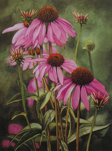 Coneflowers-Print Only