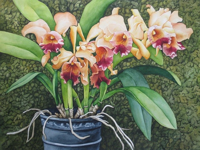 Orchid Fancy Peach 2-Framed