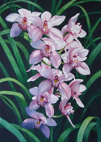 Orchids Pink 22X28-Framed
