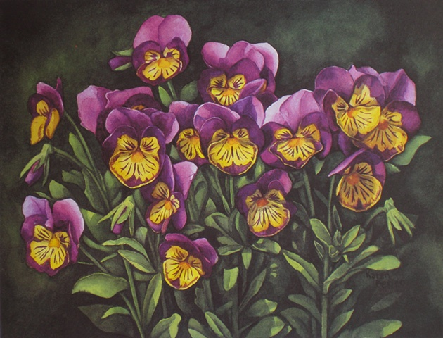 Pansies-Print Only