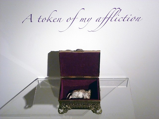 Jewel case with preserved mouse in a momento mori. Arrangement by artist, writer, curator, Darren Jones