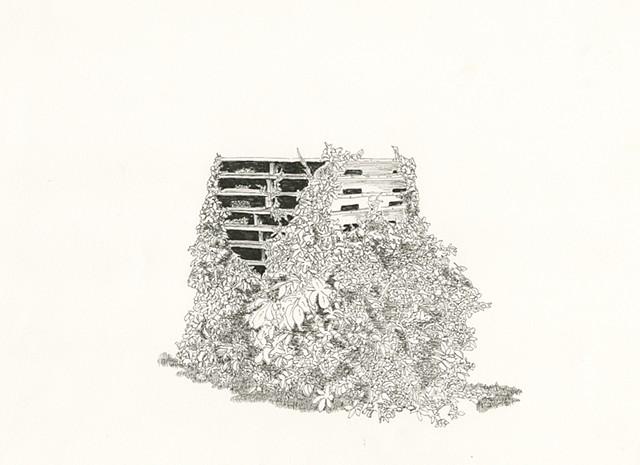 overgrown pallets