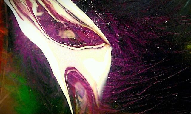Plastic Wonders with Purple Hair