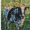 Cow - SOLD