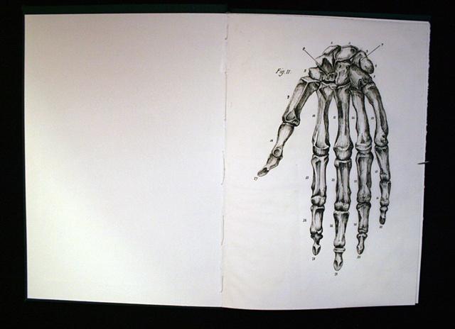 Figure 11: Figure of Speech