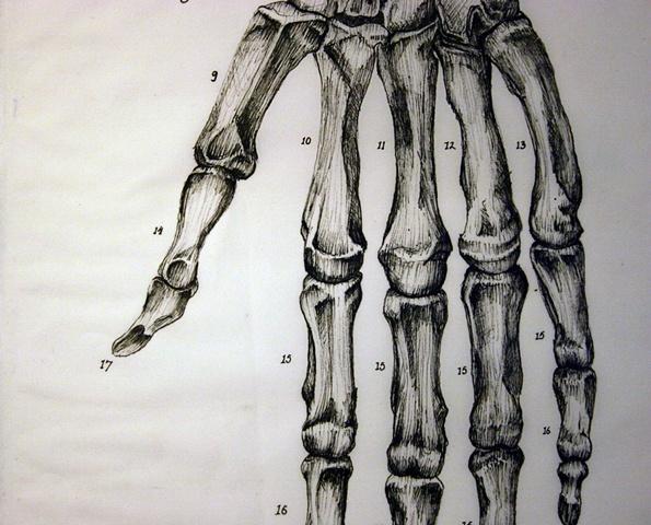 Figure 11: Figure of Speech (detail 1)