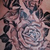 Tatouage roses r&eacute;aliste
