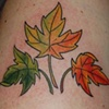 Tatouage feuilles d&#39;&eacute;rable