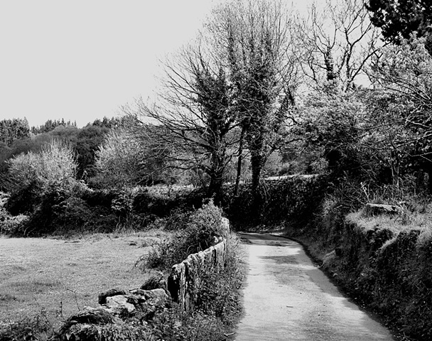 A road in the country, Galicia