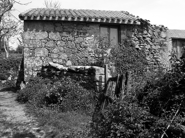 """""""Remains of a House with Weeds""""  Another beautiful old house in a village called O Mato, in Galicia"""