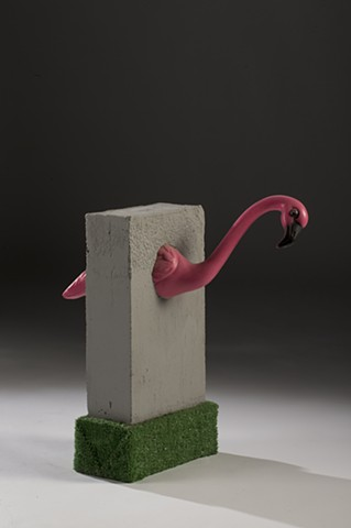 Captive: Flamingo