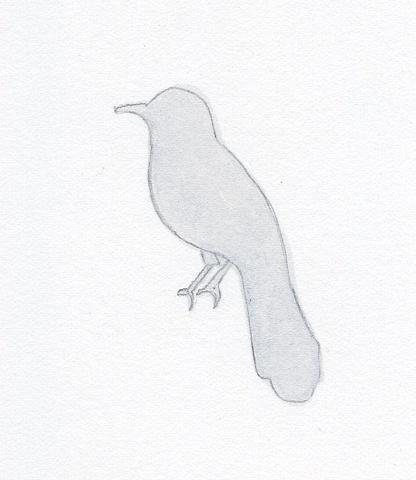 Beautiful Little Bird
