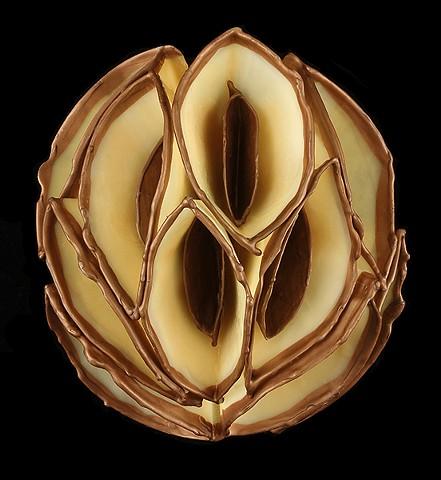 Amber Bronze Tip Cluster