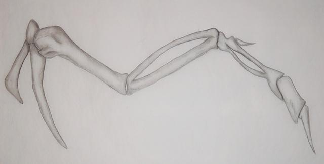 The Hunt of Jenny Wren I drawing