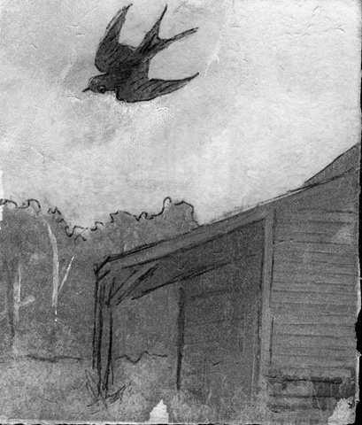 swallow flight song swooping airborne art