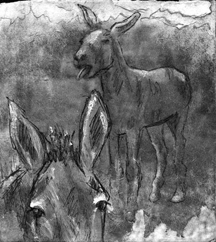 mule donkey farm ranch horse