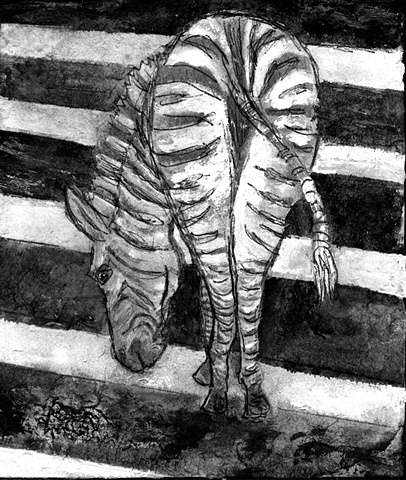 Zebra stripe, zebra crossing, africa wild animal  art drawing