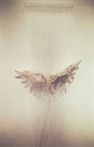 wings, lace, installation, delicate, ephemeral, string