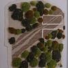 Pushing the Envelope Moss detail