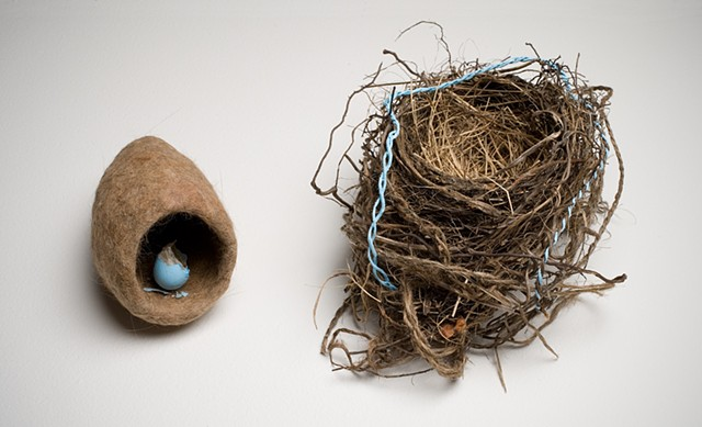 Felted cat hair, bird's nest and egg