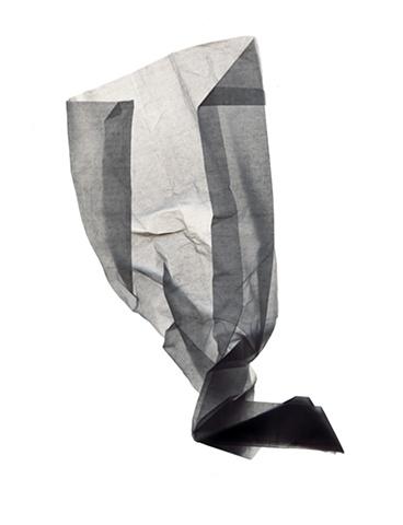 Tissue twelve