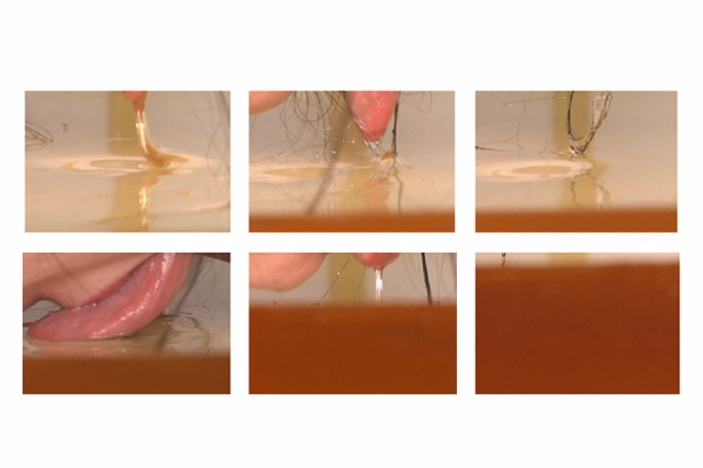 Passional 1 (honey) - composite