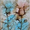 Threatened, Fading Pitcher's Thistle