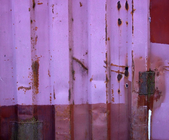 study in violet and rust