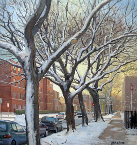 row of snow covered trees on urban street at dawn by Mary Phelan