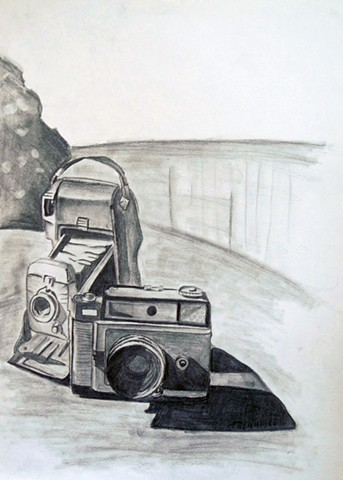 Introduction to the Visual Arts: Drawing: Object/Value Study