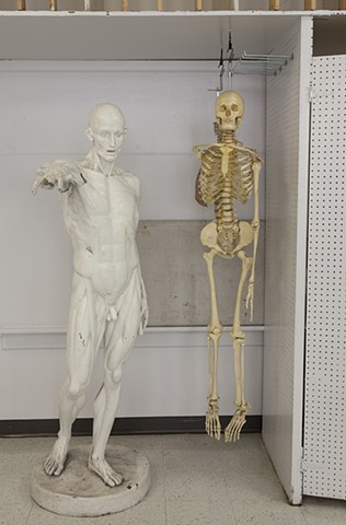 Anatomy Man and Skeleton, Boise State University