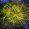 Ionic Fireworks