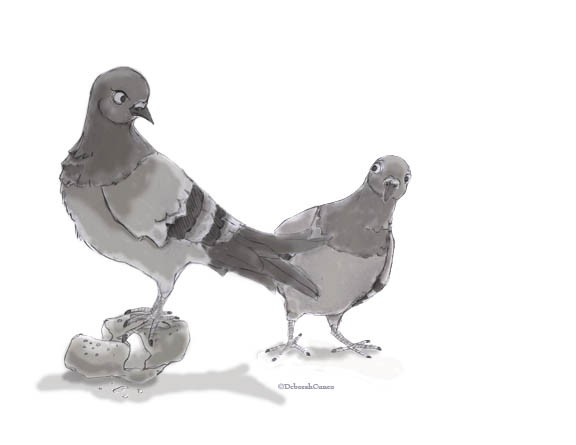 Pigeon character study