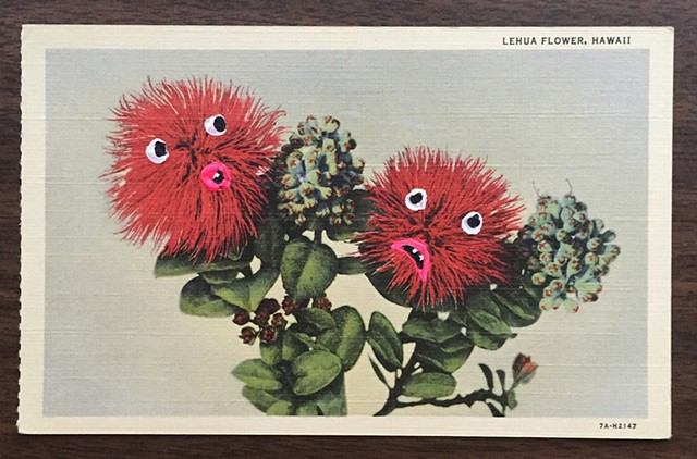 The Leary Lehua Flower